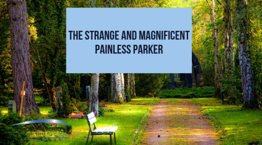 The Strange and Magnificent Painless Parker